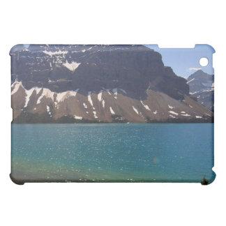 Jasper Canada iPad Mini Cases