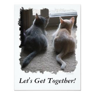 """Jasper & Kaylee Kitten """"Let's Get Together"""" Invite"""