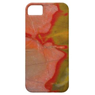 Jasper Pattern iPhone Case iPhone 5 Covers