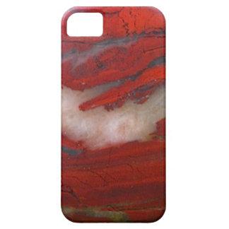 Jasper Phone Cover iPhone 5 Covers