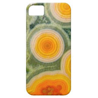 Jasper Phone Cover iPhone 5 Cases