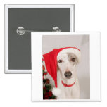 Jasper the Christmas Dog Button