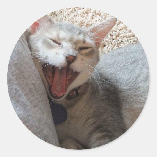 Jasper Yawning Kitten Round Photo Stickers