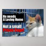 Jaula animal de la prisión poster