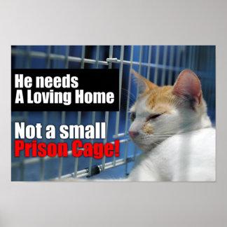 Jaula animal de la prisión póster