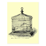 Jaula de pájaros del vintage postales