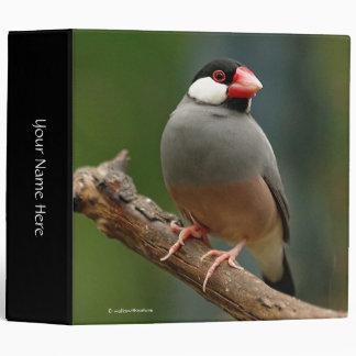 Java Finch Binder