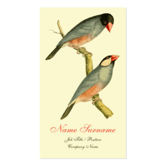 Java Sparrow, Double-Sided Standard Business Cards (Pack Of 100)