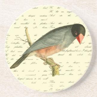 Java Sparrow, Coasters