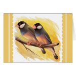 Java Sparrow Finches Realistic Painting Greeting Card