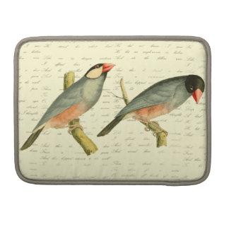 Java Sparrow, MacBook Pro Sleeves