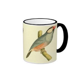 Java Sparrow, Mugs