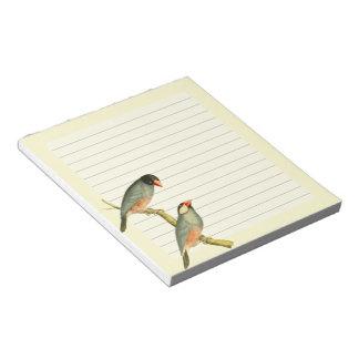 Java Sparrow, Memo Notepads