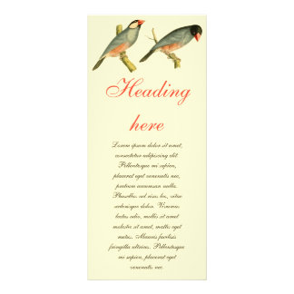 Java Sparrow, Personalized Rack Card