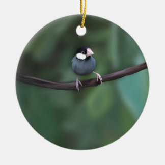 Java Sparrows Ceramic Ornament