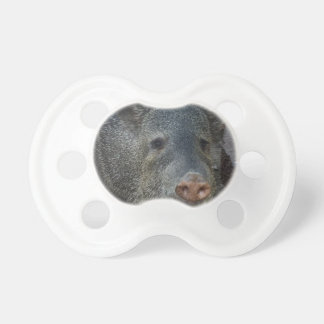 Javelina or Peccary Pacifier