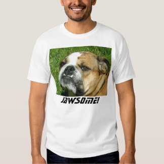 Jawsome! T Shirt