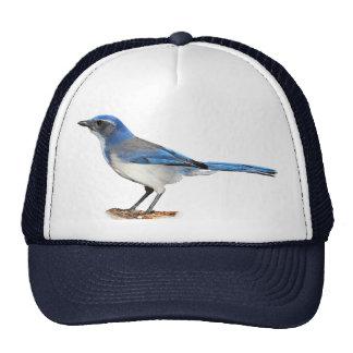 JAY 2 TRUCKER HAT