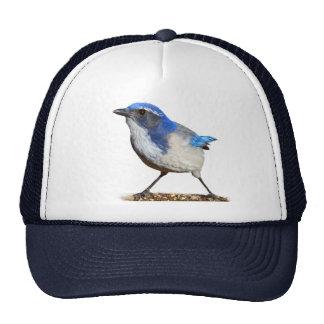 JAY 3 MESH HAT