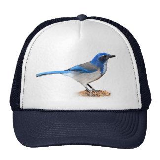 JAY 7 TRUCKER HAT