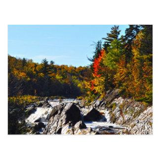 Jay Cook State Park Minnesota Postcard