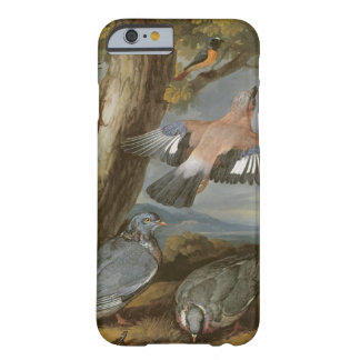 Jay, Green Woodpecker, Pigeons and Redstart, c.165 Barely There iPhone 6 Case