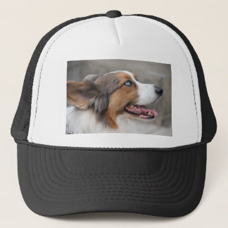 Jayke - blue merle Cardigan Welsh Corgi Trucker Hat