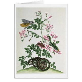 Jazmín: con la serpiente, la polilla, el caterpill tarjeta de felicitación