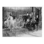 Jazz Band Entertaining Polar Bears, 1925 Postcard