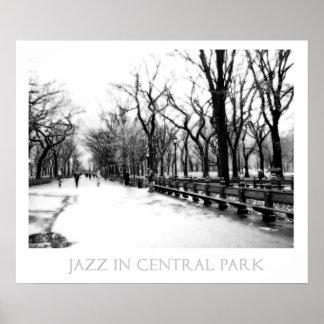 Jazz en el Central Park 24x20 Impresiones