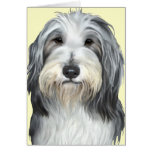 Jazz, the Bearded Collie Cards