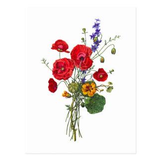 Jean Louis Prevost Bright Red Nasturtium Bouquet Postcard