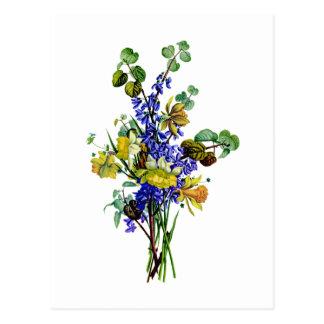 Jean Louis Prevost Daffodil Bouquet Postcard