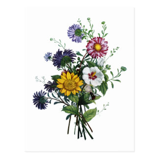 Jean Louis Prevost Daisy and Sunflower Bouquet Postcard