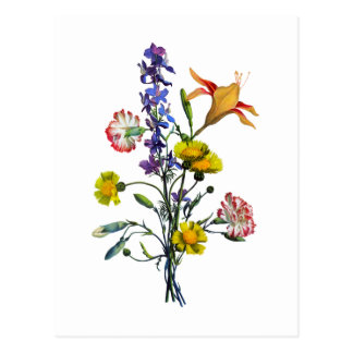 Jean Louis Prevost Day Lily and Carnation Bouquet Postcard