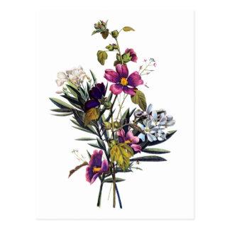 Jean Louis Prevost Mixed Flower Bouquet Postcard