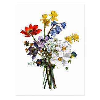 Jean Louis Prevost Narcissus and Buttercup Bouquet Postcard