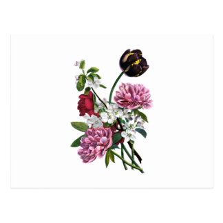 Jean Louis Prevost Peony and Tulip Bouquet Postcard