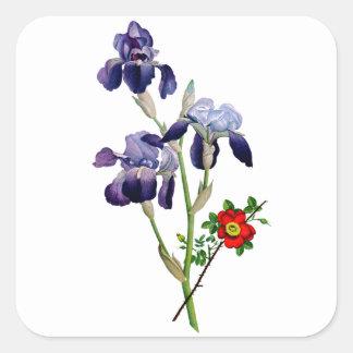 Jean Louis Prevost Purple Iris Bouquet Square Sticker