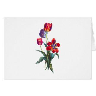Jean Louis Prevost Red & Blue Tulip Bouquet Card