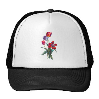 Jean Louis Prevost Red & Blue Tulip Bouquet Trucker Hat