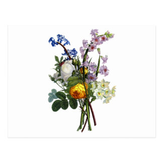 Jean Louis Prevost Rose and Narcissus Bouquet Postcard
