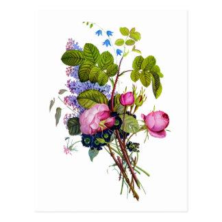 Jean Louis Prevost Rose Bouquet Postcard