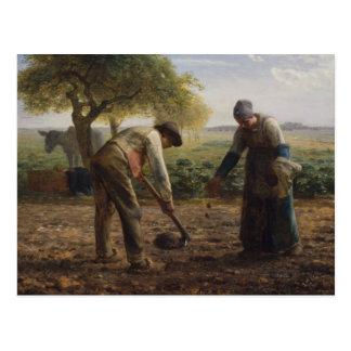 Jean Millet Painting Postcard