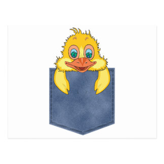 Jean Pocket Baby Duck Postcard