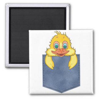Jean Pocket Baby Duck Refrigerator Magnets