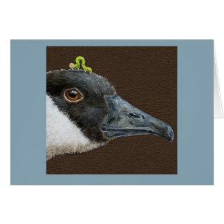 Jeb the Canada goose card