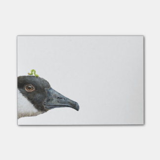 Jeb the Canada goose Post-it notes