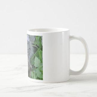 Jebediah! Classic White Coffee Mug
