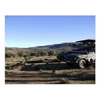 Jeep landscape Safari Postcard